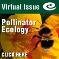 pollinator VI ad