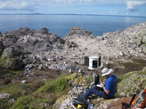 A Gigapan camera setup to record images of an albatross colony. ©Alistair Hobday