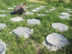 A mesocosm experiment exploring the effects of habitat fragmentation on decomposition rates. Here, each covered bucket sunk into the ground holds a dung pat and an artificially-assembled dung beetle community representing either the species composition of a fragmented or intact landscape. © Helena Rosenlew.