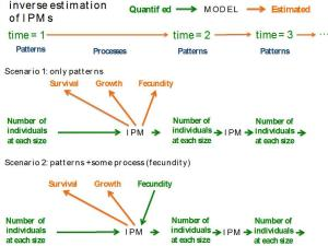 Two scenarios where inverse estimation of IPMs is useful