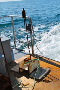 Hydrophone mounted on a weight, ready for deployment in the field. ©Rosalyn Putland