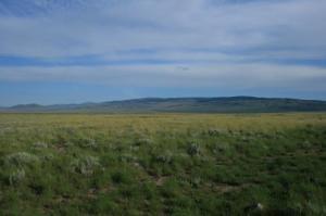 Midsummer sagebrush steppe landscape in eastern Idaho, USA. © B. Teller.