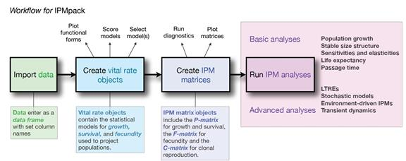 Figure 1 from Metcalf et al. 2013 (Methods in Ecology and Evolution): Workflow diagram for IPMpack.