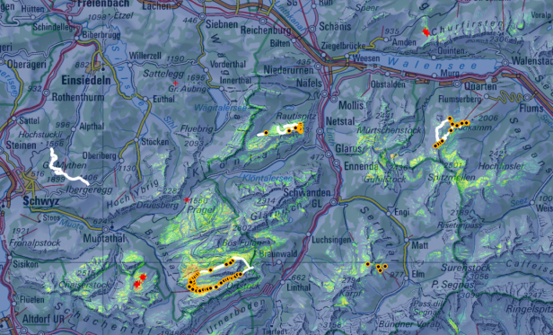 A habitat suitability map used for the prospective sampling approach to predict the potential distribution of Leucanthemum halleri (Vitman) Ducommun in the Swiss Alps (orange-black dots show new-found occurrences which were unknown in the database before)