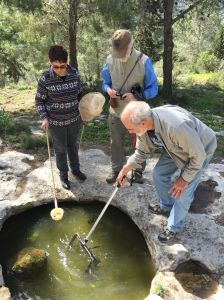 The small size of the rockpool and the salamander population makes non-invasive sampling a necessity (from left: Tamar Krugman, Alan Templeton, Leon Blaustein). © Arne Nolte