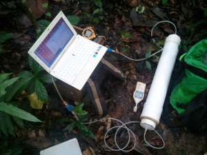 Real-time respiration measurement from woody debris (inside chamber in PVC) in secondary forest in Xishuangbanna, SW China. Laptop is on top of wood made box containing gas analyser Licor 820 (© Dossa).