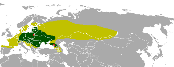 Distribution of the European bison, in light green maximum extent during the Holocene, in dark green during the middle ages and in red the loci where the last individuals were hunted in the wild in the 1920s. © Altaileopard.