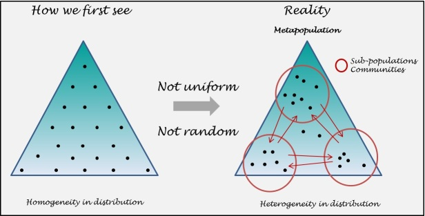 How individuals could distribute themselves within an area.