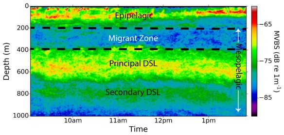 Communities of organisms (fish, zooplankton, squid and jellyfish) reside in these layers (shown by relatively large backscatter values - green to red on colour-scale). Proud et al. (2017)