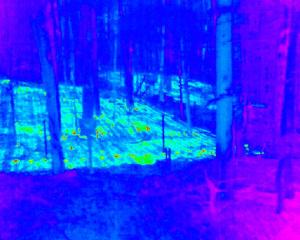 Thermal image of heated forest plots.  © Jon Chapell, Science Metrics LLC 2015