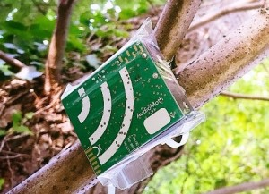 AudioMoth low-cost, open-source acoustic sensor ©openacousticdevices.info